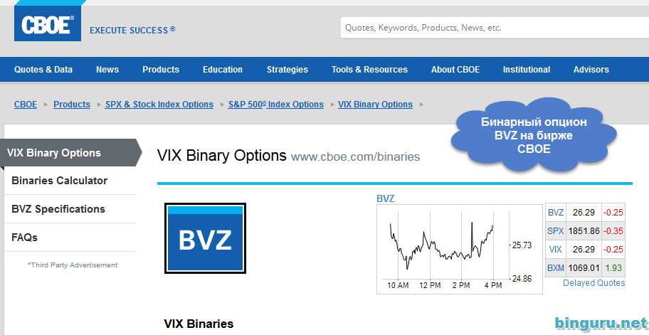 Bsz binary options